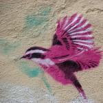 kvinnen-med-nc3b8klene_rosa-fugl