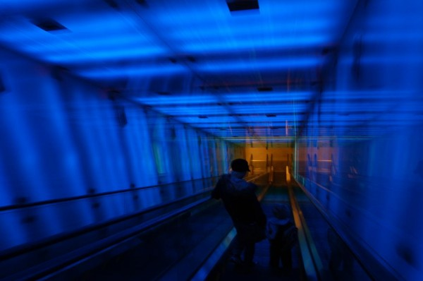 tunnel-of-light-bare-blatt-nesten