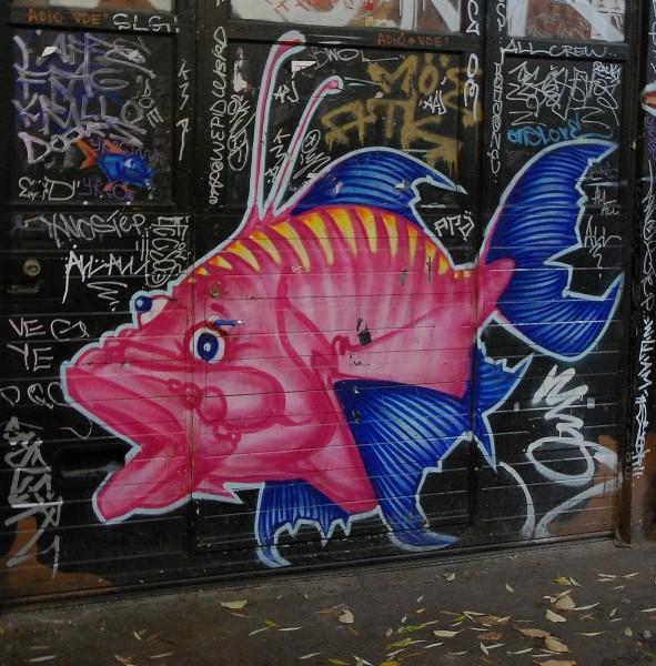 Rosa fisk