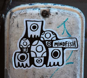 Mindfish_1_A